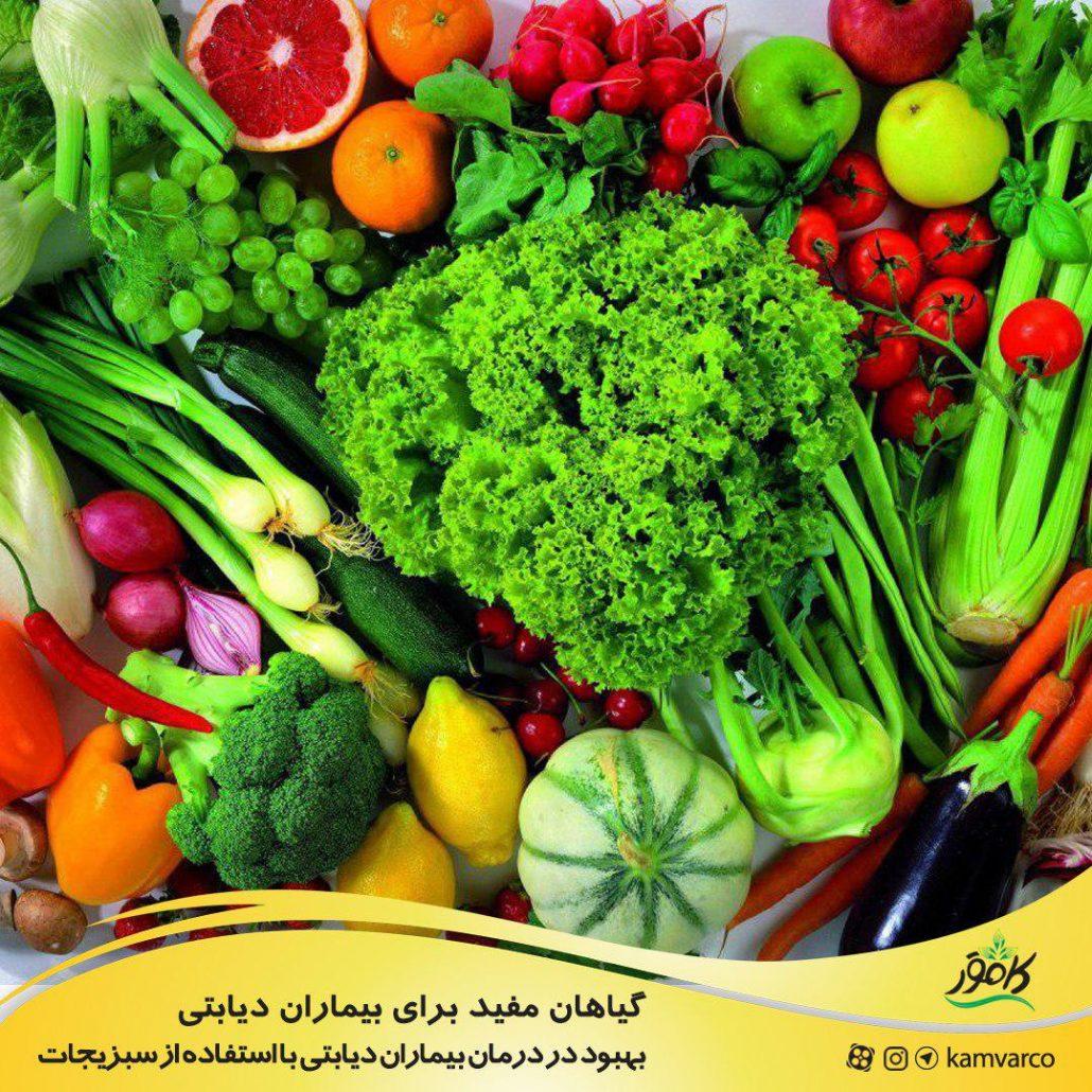 گیاهان مفید برای بیماران دیابتی