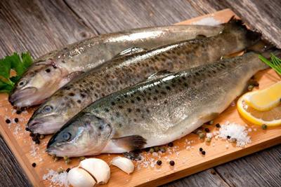 غذاهای دریایی, سلامتی با غذاهای دریایی